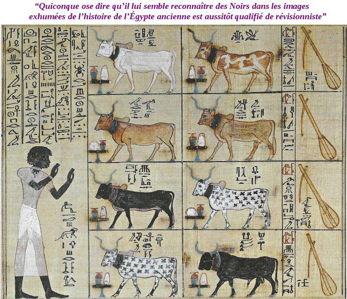 Berger égyptien